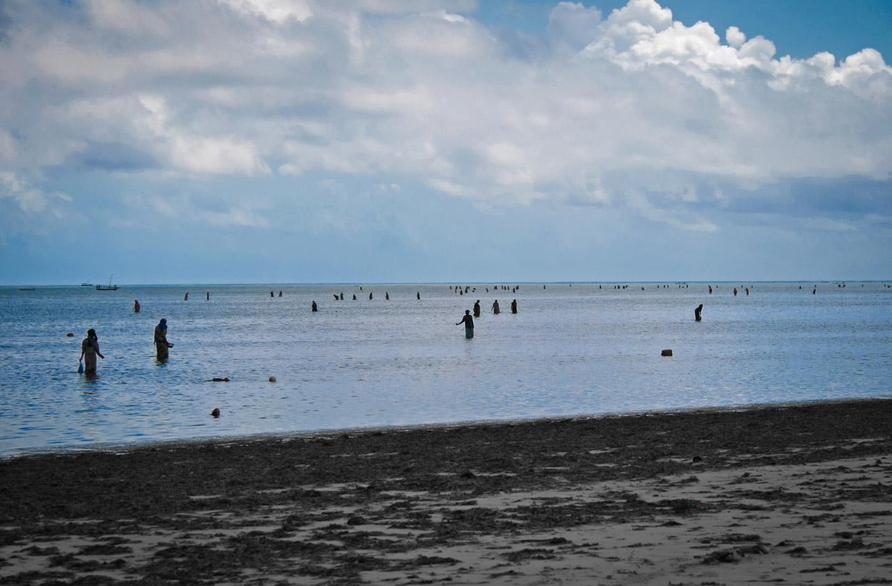 Banda Kuu Beach - Zanzibar, TZ