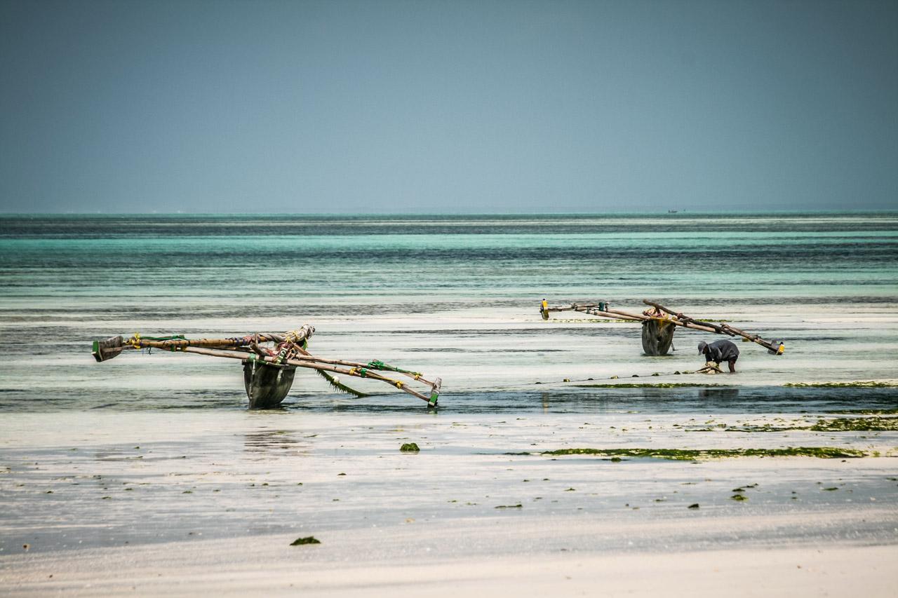 Kiwengwa - Zanzibar, TZ